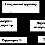 Учебная работа № 2628.  Бухгалтерский учет на примере ООО «Сатурн»
